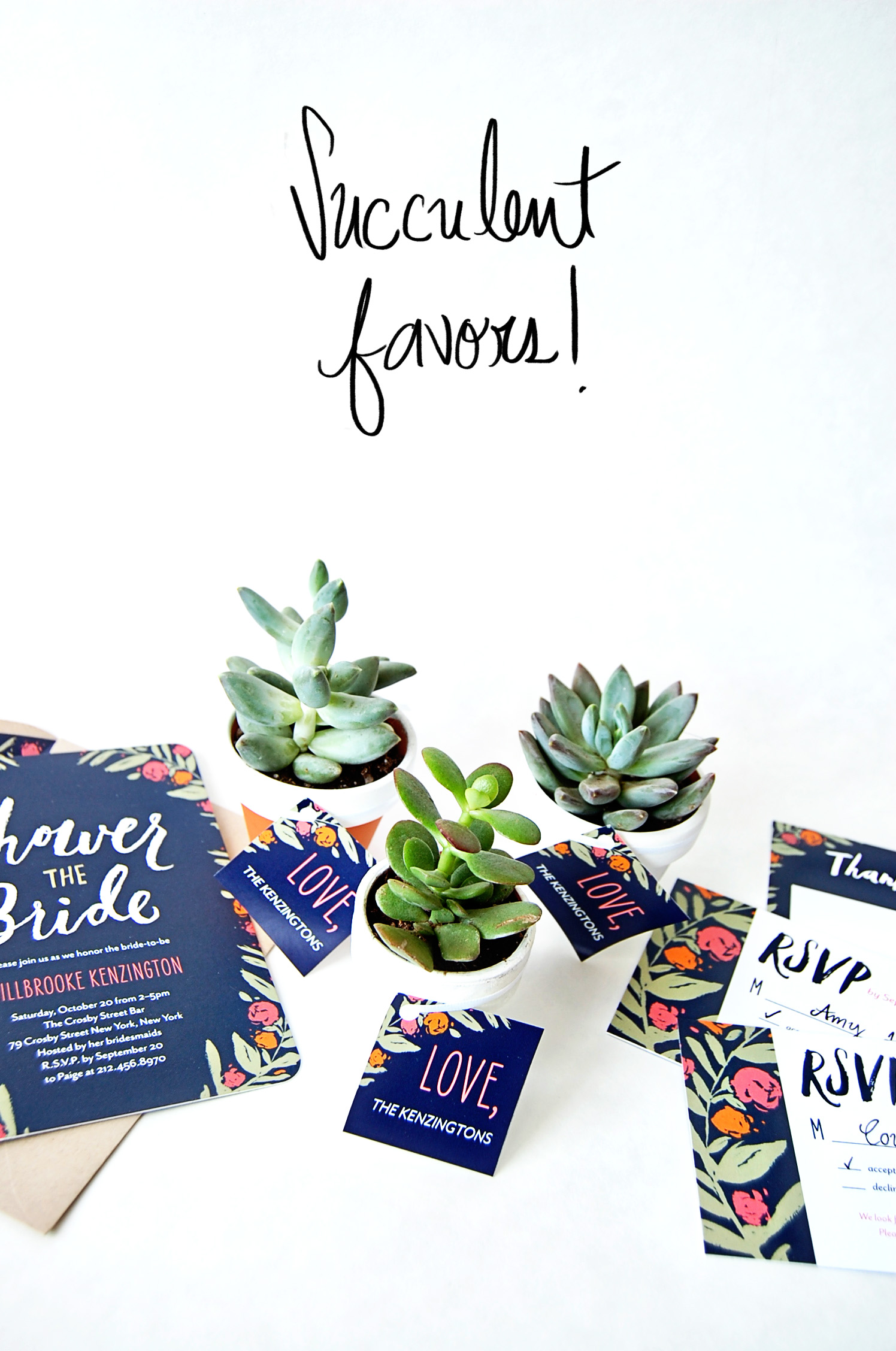 Succulent Favors DIY Wedding Paper Divas