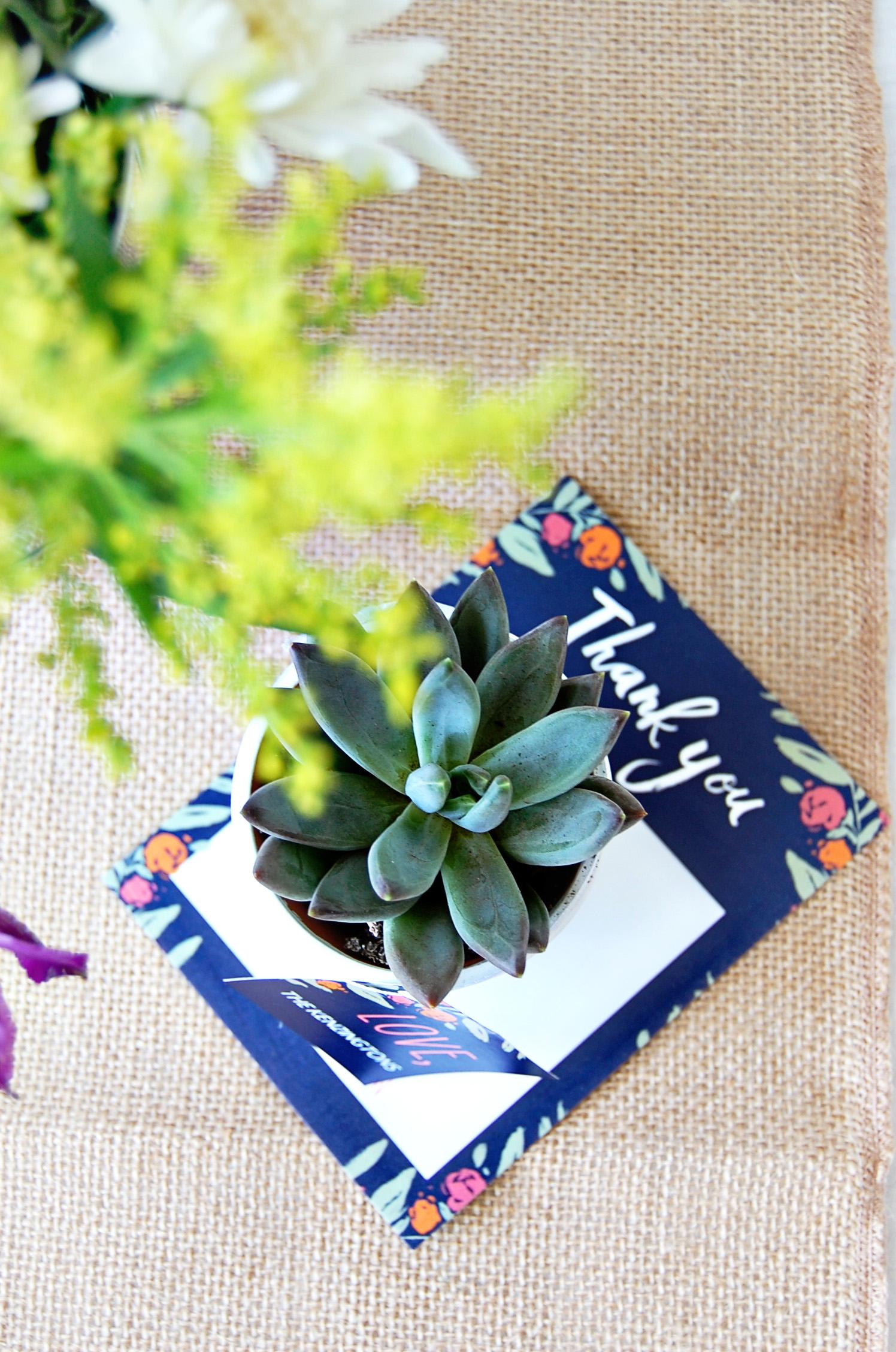 Succulent Favors DIY | Wedding Paper Divas