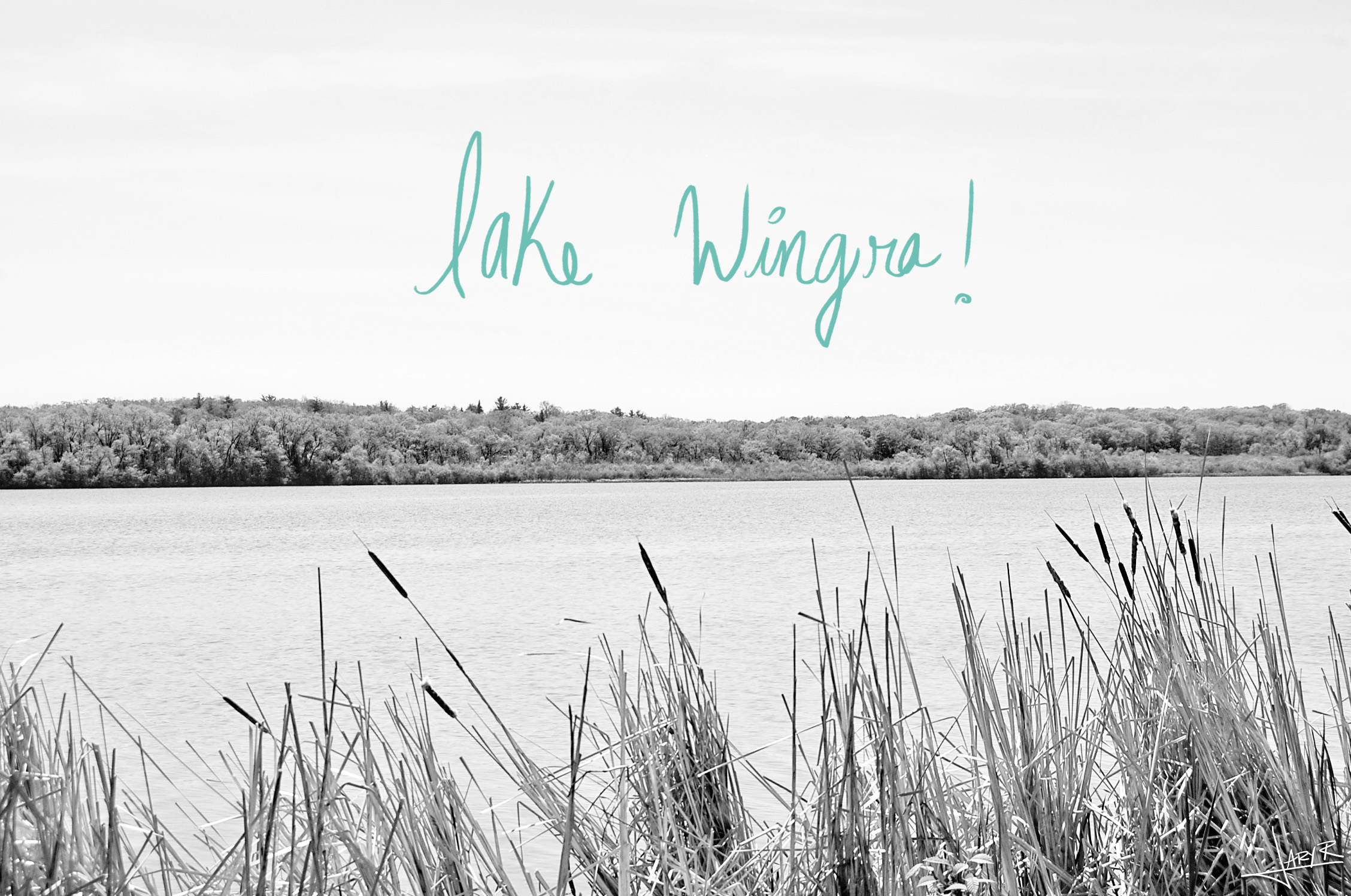 Lake Wingra snapshots