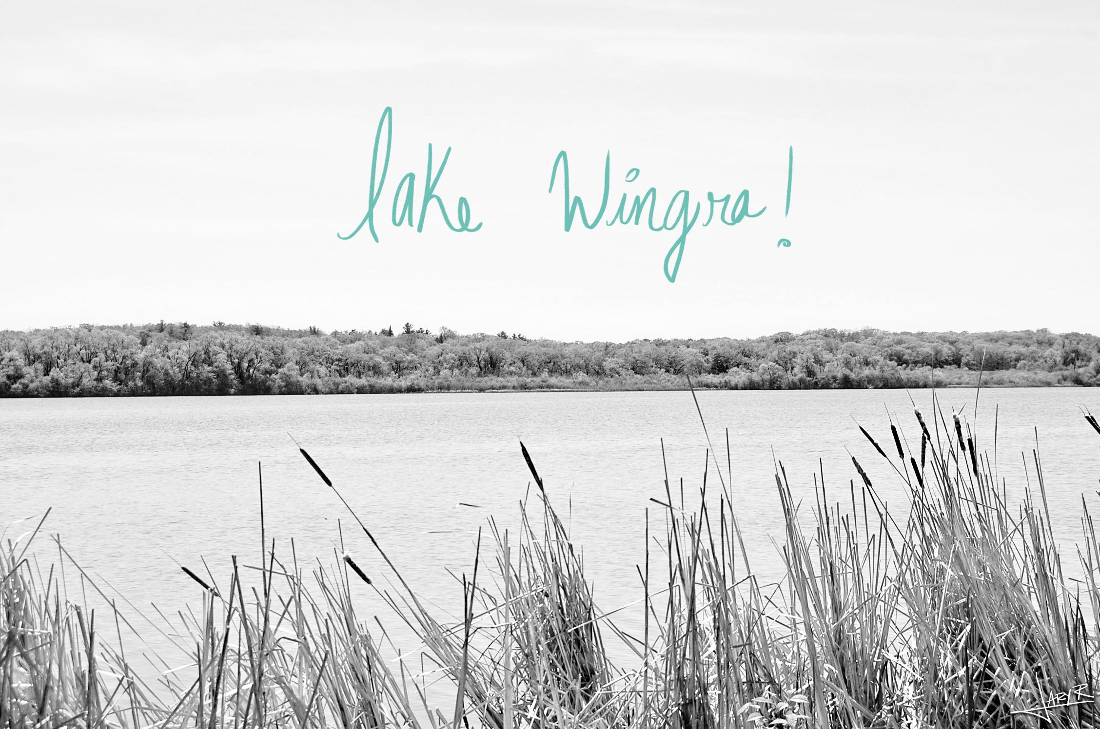 Lake Wingra snapshots