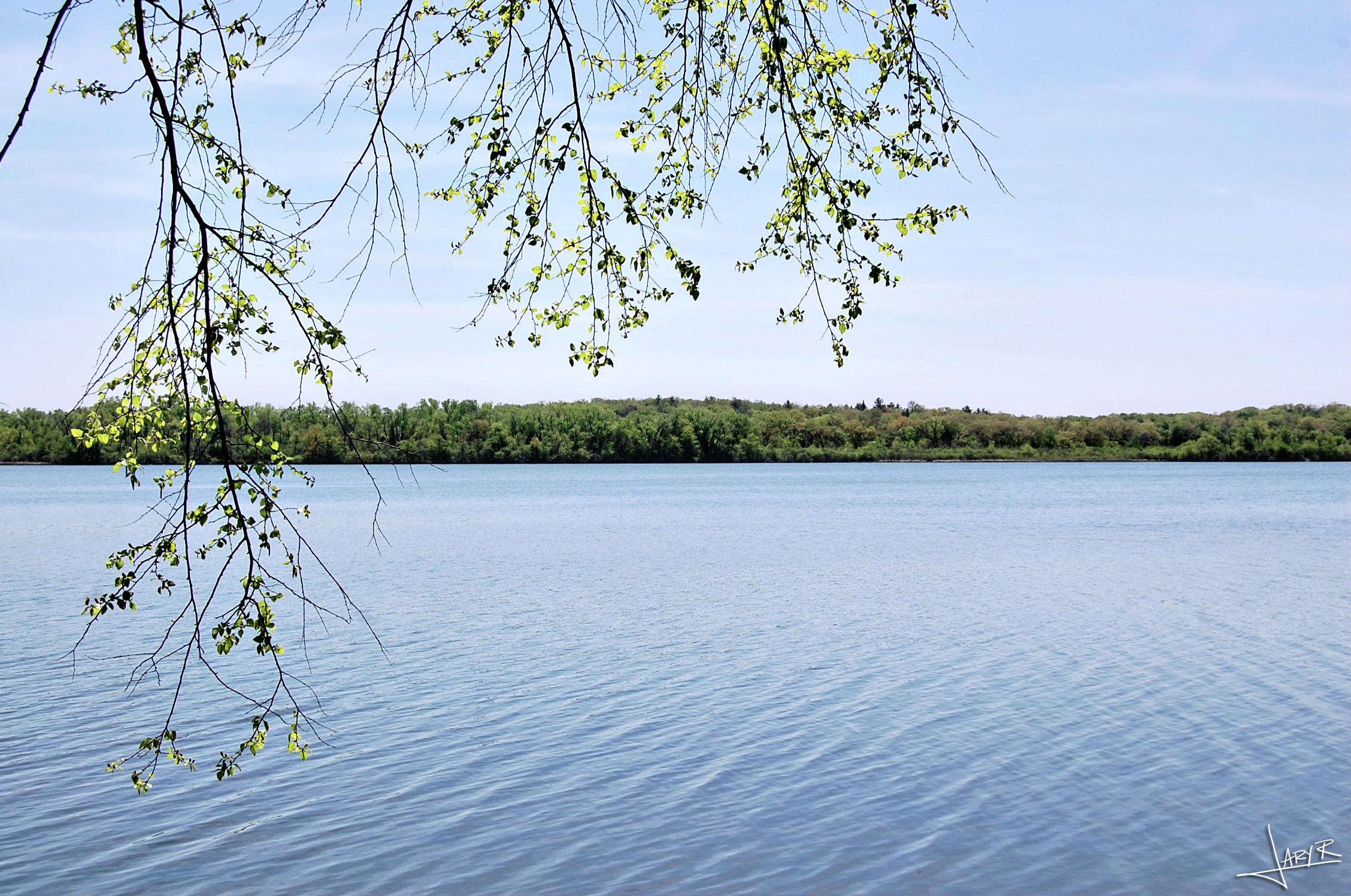 Lake Wingra WI